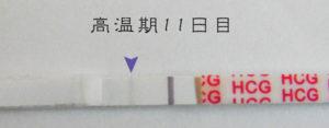 高温期11日目 早期妊娠検査薬フライング