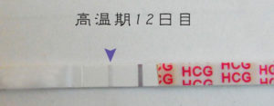 高温期12日目 早期妊娠検査薬フライング