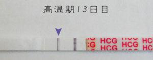 高温期13日目 早期妊娠検査薬フライング