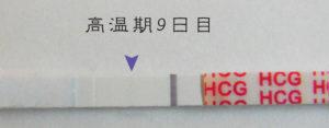 高温期9日目 早期妊娠検査薬フライング